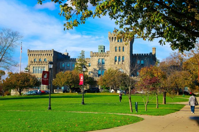 Manhattanville College Chairman's funding for International Students in the USA, 2020