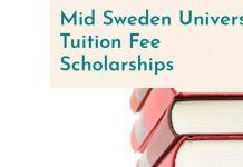 Mid Sweden University Scholarships
