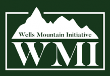 WMF Empowerment Through Education Scholarships 2021