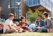 International PhD Fellowships at Massey University, New Zealand